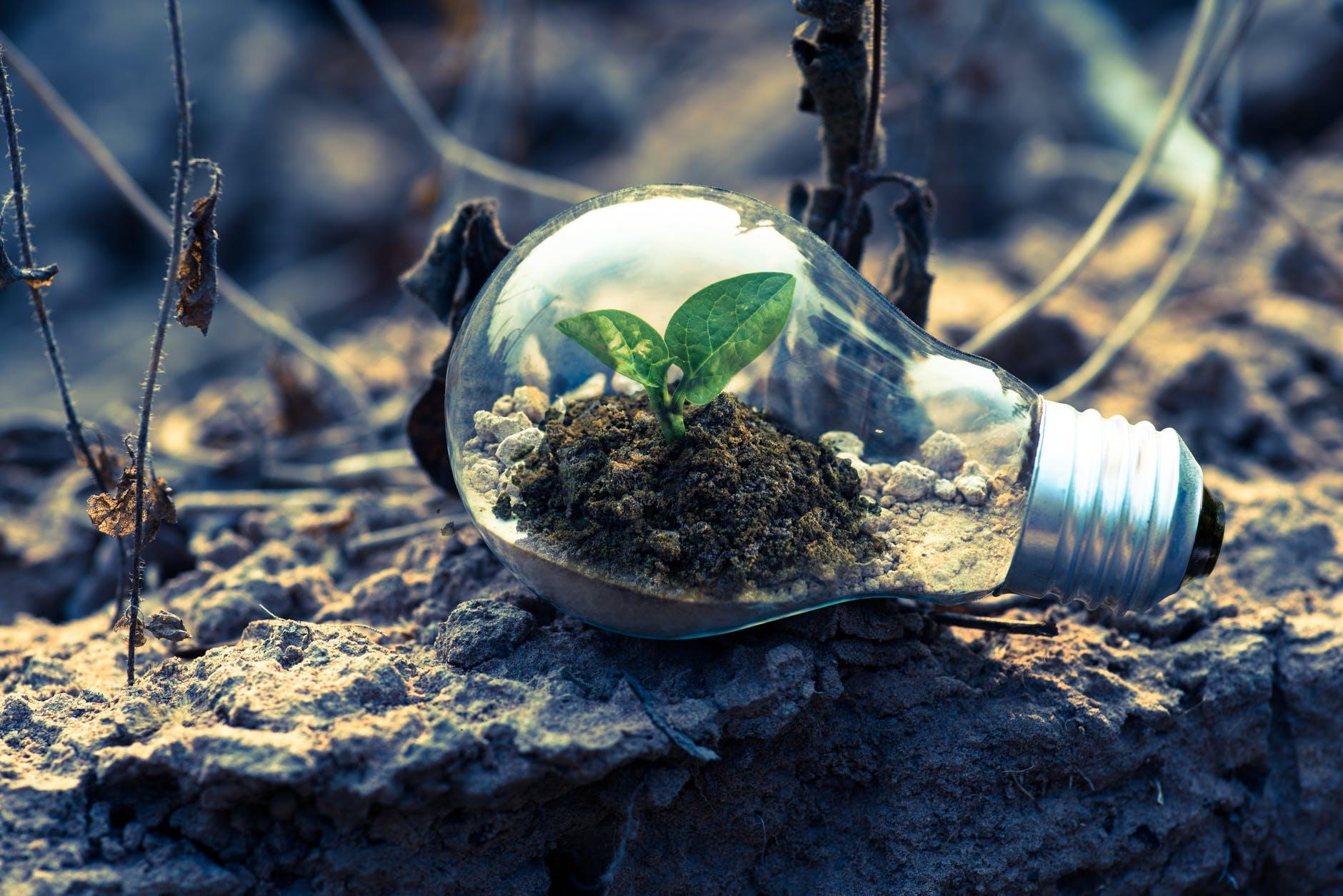 Hvad er grøn energi