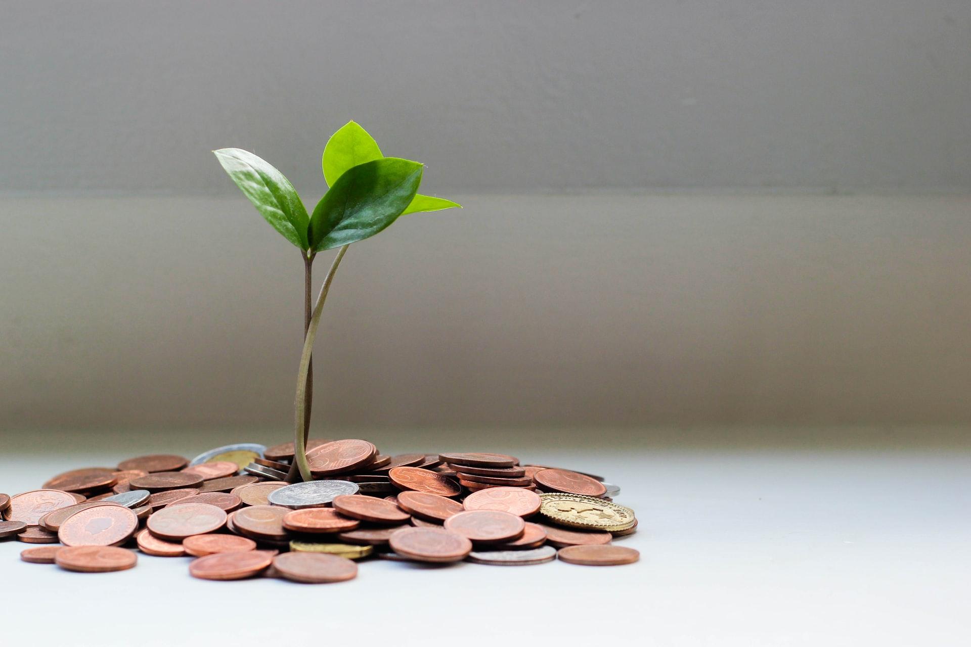 Små steder, du kan spare penge i hverdagen